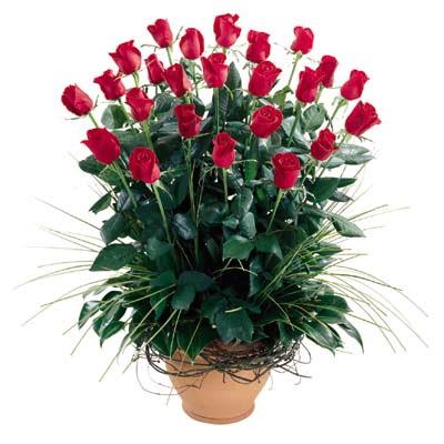 Iğdır Kasımcan kaliteli taze ve ucuz çiçekler  10 adet kirmizi gül cam yada mika vazo
