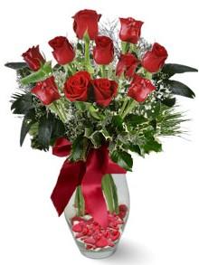 9 adet gül  Iğdır Enginalan uluslararası çiçek gönderme  kirmizi gül