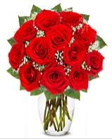12 adet vazoda kıpkırmızı gül  Iğdır Hoşhaber çiçek servisi , çiçekçi adresleri