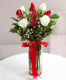 5 kırmızı 4 beyaz gül vazoda  Iğdır Yaycı çiçek mağazası , çiçekçi adresleri