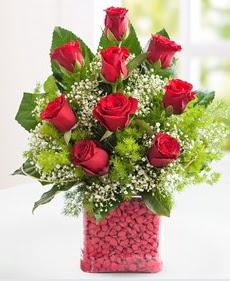 Cam içerisinde 9 adet kırmızı gül  Iğdır Enginalan uluslararası çiçek gönderme