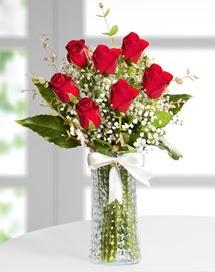 Cam vazoda 7 adet kırmızı gül  Iğdır Konaklı internetten çiçek siparişi