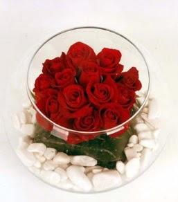 Cam fanusta 11 adet kırmızı gül  Iğdır Söğütlü çiçek siparişi sitesi