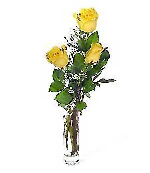 Iğdır Melekli anneler günü çiçek yolla  3 adet kalite cam yada mika vazo gül