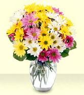 Iğdır Melekli anneler günü çiçek yolla  mevsim çiçekleri mika yada cam vazo