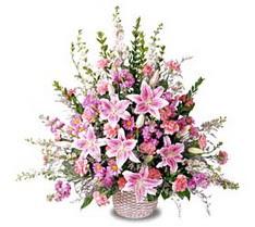 Iğdır Obaköy cicekciler , cicek siparisi  Tanzim mevsim çiçeklerinden çiçek modeli