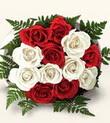 Iğdır Konaklı internetten çiçek siparişi  10 adet kirmizi beyaz güller - anneler günü için ideal seçimdir -