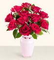 Iğdır Aşağı erhacı online çiçek gönderme sipariş  10 kirmizi gül cam yada mika vazo tanzim
