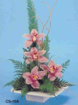 Iğdır Karaağaç internetten çiçek satışı  vazoda 4 adet orkide