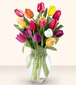 Iğdır Akyumak 14 şubat sevgililer günü çiçek  13 adet cam yada mika vazoda laleler