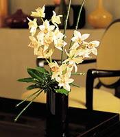 Iğdır Akyumak 14 şubat sevgililer günü çiçek  cam yada mika vazo içerisinde dal orkide