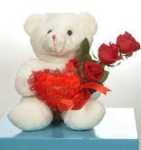 3 adetgül ve oyuncak   Iğdır Alikamerli çiçek satışı