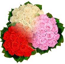 3 renkte gül seven sever   Iğdır Konaklı internetten çiçek siparişi