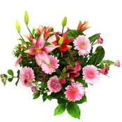 lilyum ve gerbera çiçekleri - çiçek seçimi -  Iğdır Söğütlü çiçek siparişi sitesi
