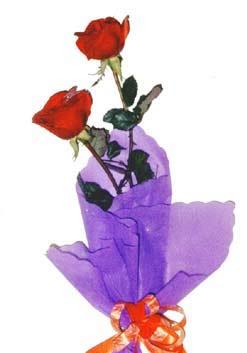 2  adet kirmizi gül buketi   Iğdır Konaklı internetten çiçek siparişi