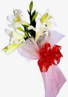Iğdır Konaklı internetten çiçek siparişi  ince vazoda gerbera ve ayi