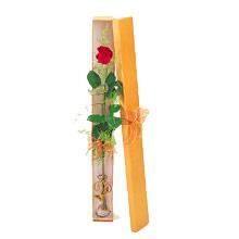 ince  kutuda  1  gül   Iğdır 12 eylül çiçekçi mağazası