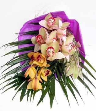 Iğdır Yaycı çiçek mağazası , çiçekçi adresleri  1 adet dal orkide buket halinde sunulmakta