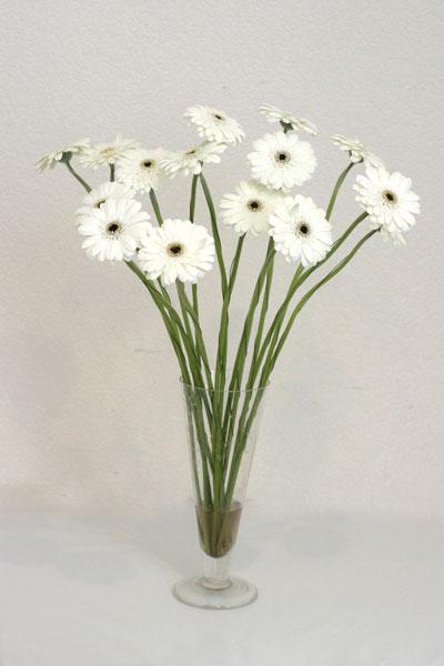 Iğdır karakoyunlu çiçek gönderme sitemiz güvenlidir  cam vazo içerisinde 17 adet sade gerbera