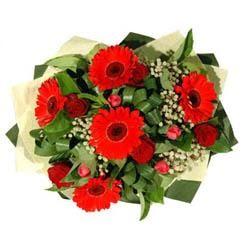 Iğdır Cumhuriyet çiçek siparişi vermek   5 adet kirmizi gül 5 adet gerbera demeti