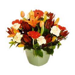 mevsim çiçeklerinden karma aranjman  Iğdır topçular çiçek , çiçekçi , çiçekçilik