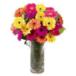 KARISIK GERBERALARDAN CAM VAZO TANZIMI  Iğdır Hakveis çiçek gönderme