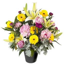 karisik mevsim çiçeklerinden vazo tanzimi  Iğdır Kasımcan kaliteli taze ve ucuz çiçekler