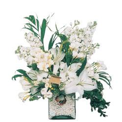 Iğdır Melekli anneler günü çiçek yolla  sadece beyazlardan olusmus mevsim cam yada mika tanzim