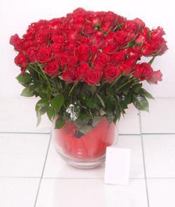 Iğdır Hoşhaber çiçek servisi , çiçekçi adresleri  101 adet kirmizi gül