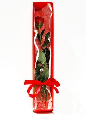 Iğdır Kışla çiçekçi telefonları  1 adet kutuda gül