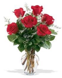 Iğdır 14 kasım hediye çiçek yolla  7 adet kirmizi gül cam yada mika vazoda sevenlere