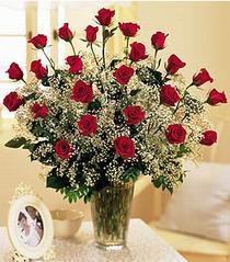 Iğdır Konaklı internetten çiçek siparişi  özel günler için 12 adet kirmizi gül