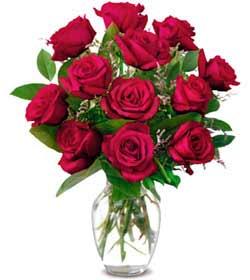 Iğdır Karakuyu çiçek online çiçek siparişi  1 düzine kirmizi gül sevenlere özel vazo gülleri