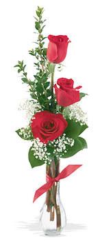 Iğdır Yaycı çiçek mağazası , çiçekçi adresleri  mika yada cam vazoda 3 adet kirmizi gül