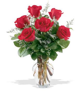 Iğdır Yaycı çiçek mağazası , çiçekçi adresleri  cam yada mika vazoda 6 adet kirmizi gül