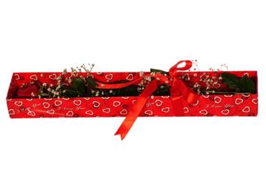 Iğdır Karaağaç internetten çiçek satışı  kutu içerisinde 1 adet kirmizi gül