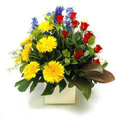 Iğdır Karakuyu çiçek online çiçek siparişi  9 adet gül ve kir çiçekleri cam yada mika vazoda