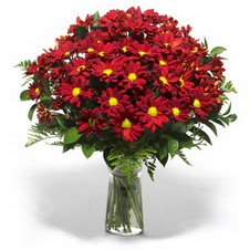 Iğdır 12 eylül çiçekçi mağazası  Kir çiçekleri cam yada mika vazo içinde