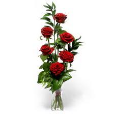 Iğdır Kasımcan kaliteli taze ve ucuz çiçekler  mika yada cam vazoda 6 adet essiz gül