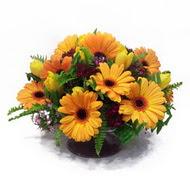 gerbera ve kir çiçek masa aranjmani  Iğdır Özdemir hediye sevgilime hediye çiçek
