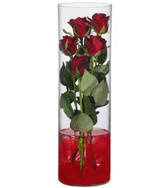cam içerisinde 7 adet kirmizi gül  Iğdır Akyumak 14 şubat sevgililer günü çiçek