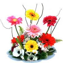 Iğdır Aşağı erhacı online çiçek gönderme sipariş  camda gerbera ve mis kokulu kir çiçekleri
