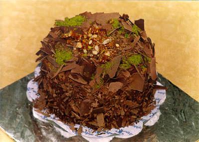 Çikolatali 4 ila 6 kisilik yas pasta  Iğdır 14 kasım hediye çiçek yolla