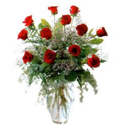 Vazo içerisinde 11 kirmizi gül  Iğdır Özdemir hediye sevgilime hediye çiçek