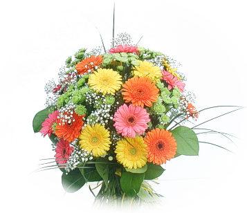 13 adet gerbera çiçegi buketi  Iğdır Karakuyu çiçek online çiçek siparişi