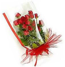 13 adet kirmizi gül buketi sevilenlere  Iğdır Özdemir hediye sevgilime hediye çiçek