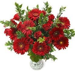 5 adet kirmizi gül 5 adet gerbera aranjmani  Iğdır Aşağı erhacı online çiçek gönderme sipariş
