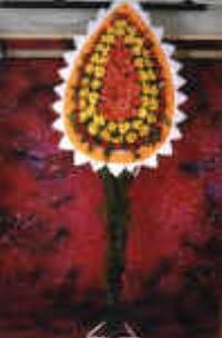 Iğdır 7 kasım çiçekçiler  dügün açilis çiçekleri  Iğdır Konaklı internetten çiçek siparişi