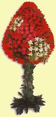 Iğdır Söğütlü çiçek siparişi sitesi  dügün açilis çiçekleri  Iğdır çiçekçiler , çiçek yolla , çiçek gönder , çiçekçi