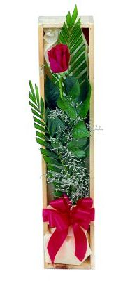 1 adet kutuda kirmizi gül  Iğdır 14 kasım hediye çiçek yolla